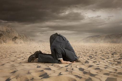 head in sand corporate crisis