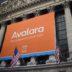 Avalara shares