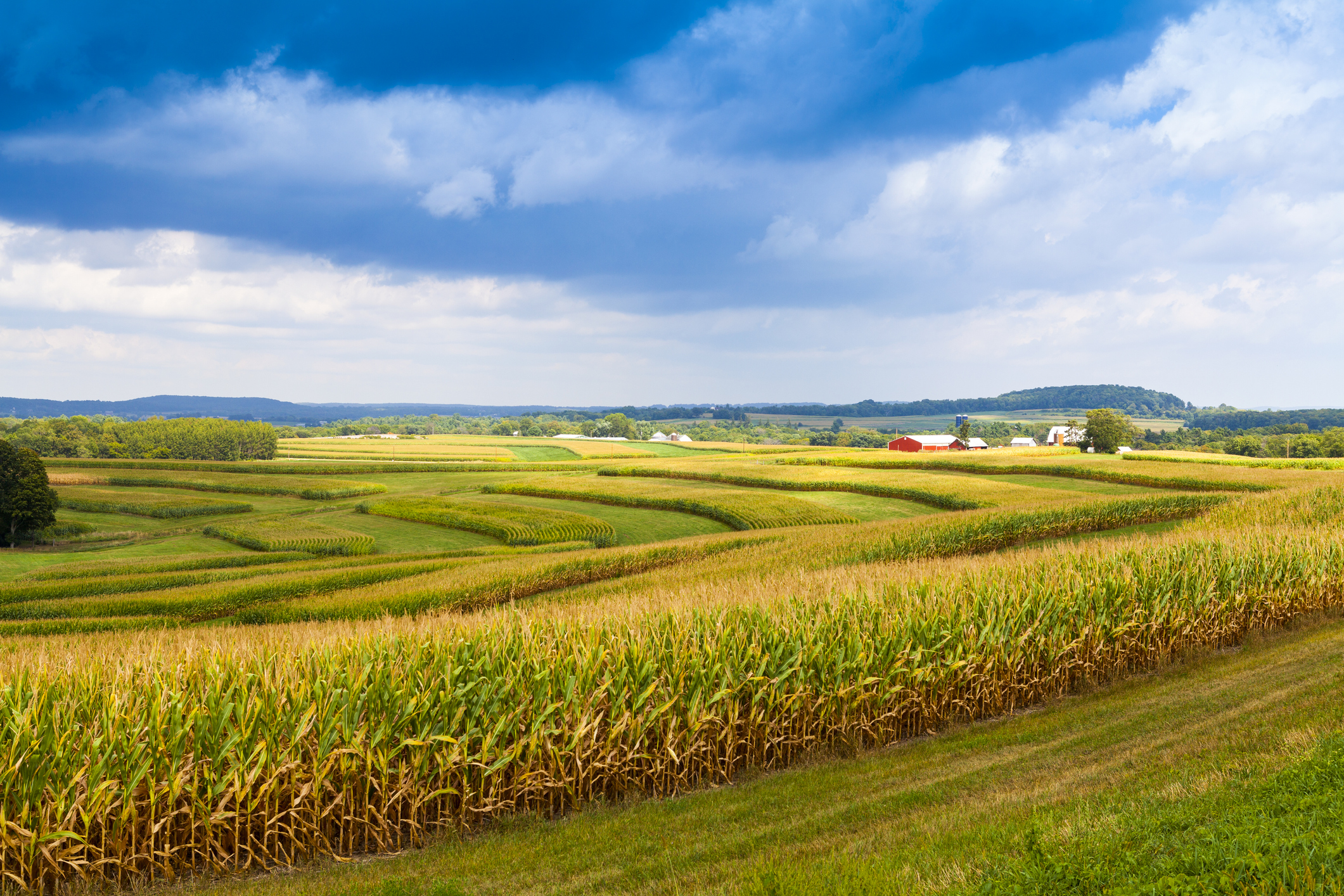 Fintech Takes Root in America's Farmland - CFO